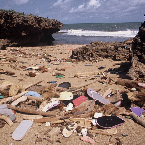 Flip Flop pollution Ocean Sole INKLINE