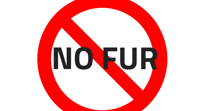 NO FUR.png
